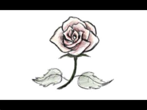 How to Draw A Rose: In 16 Easy And Detailed Steps with