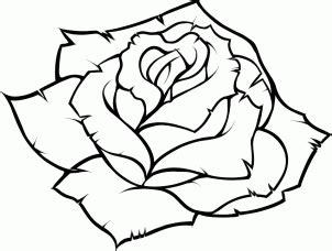 How to draw a rose essay